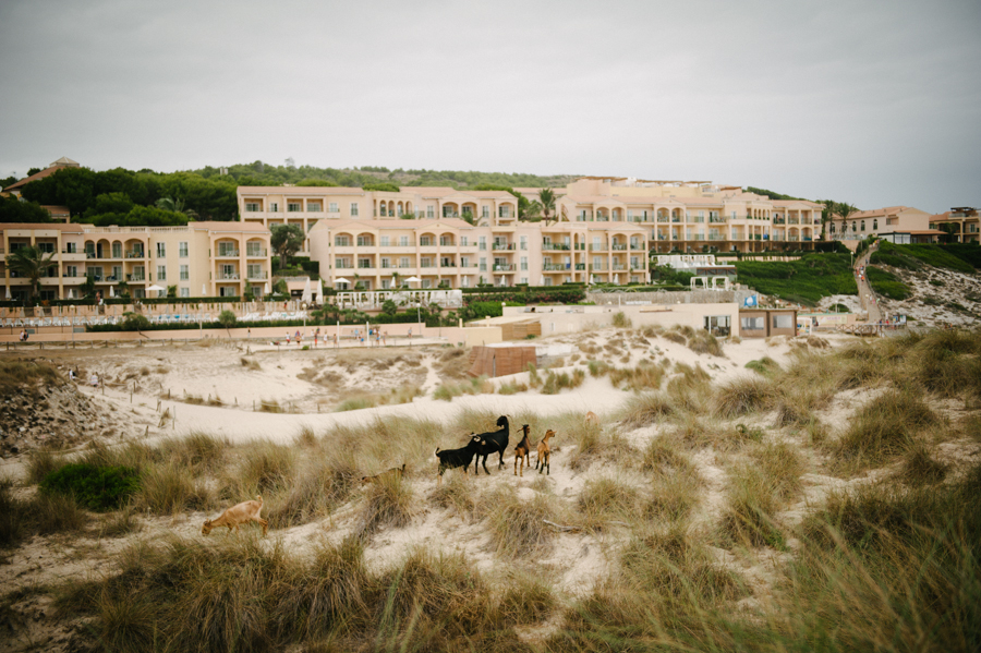 Mallorca, Wedding Photographer, international033