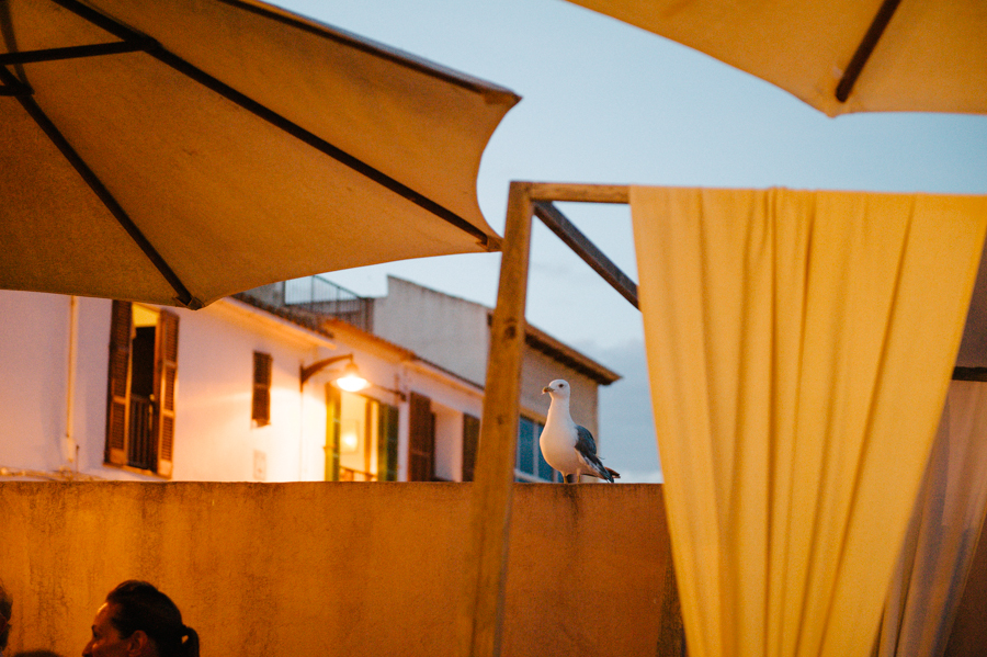 Mallorca, Wedding Photographer, international038