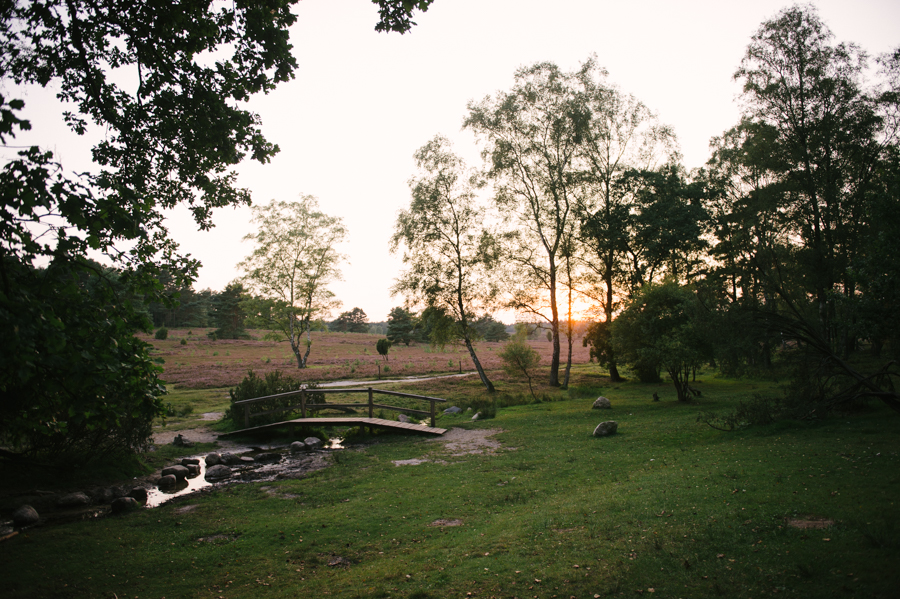 Lüneburger Heide, Fotograf, Familie, Kathrin Stahl