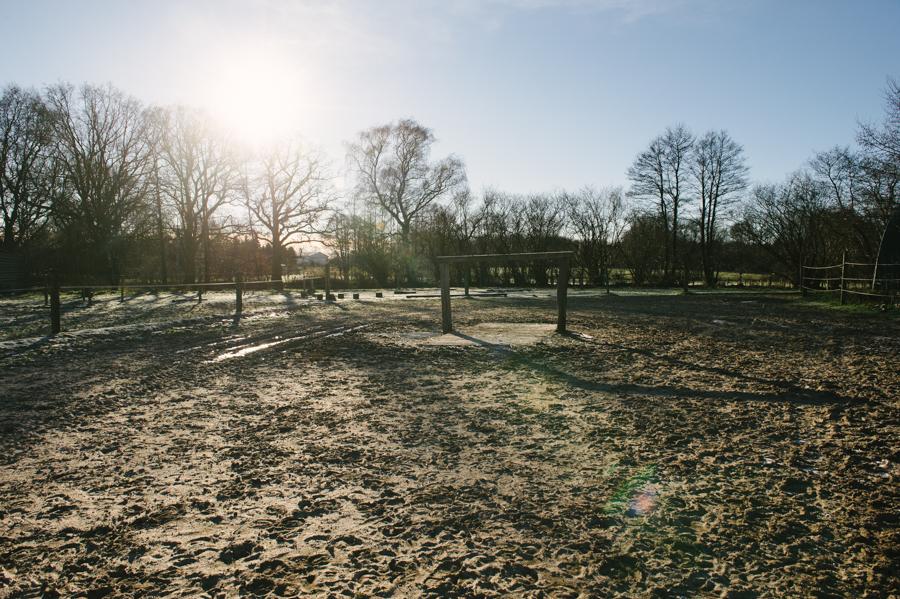 Caballo, Pferd, Fotograf, Kathrin Stahl, Hamburg, 002