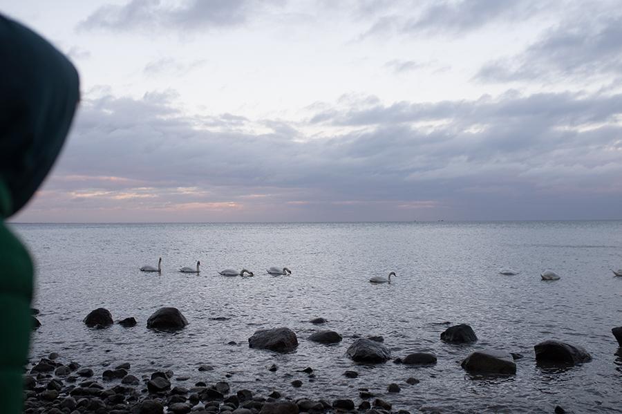 Fotograf, Familie, Kind, Ostsee028