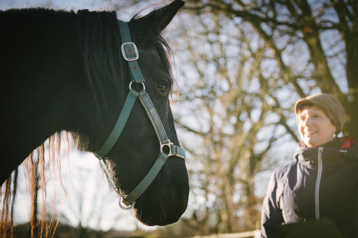 Pferd, Fotograf, Tier, Hamburg, Kathrin Stahl, 008