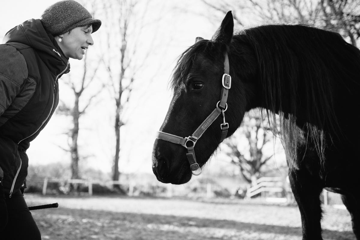 Pferd, Fotograf, Tier, Hamburg, Kathrin Stahl, 009