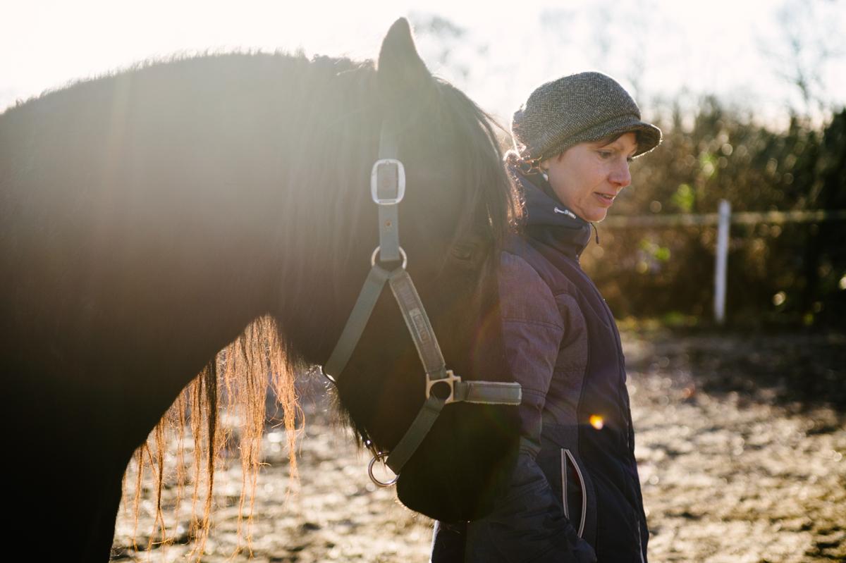 Pferd, Fotograf, Tier, Hamburg, Kathrin Stahl, 011