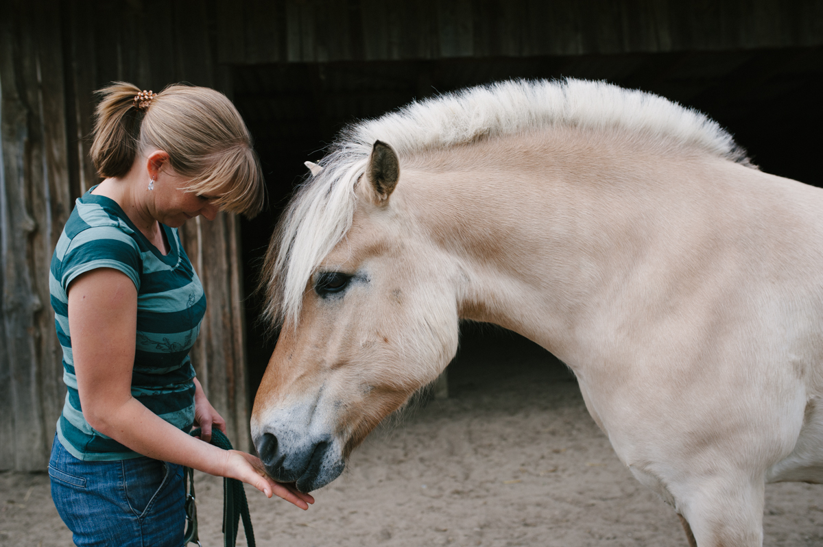Pferd, Fotograf, Doku, Hamburg, Kathrin Stahl