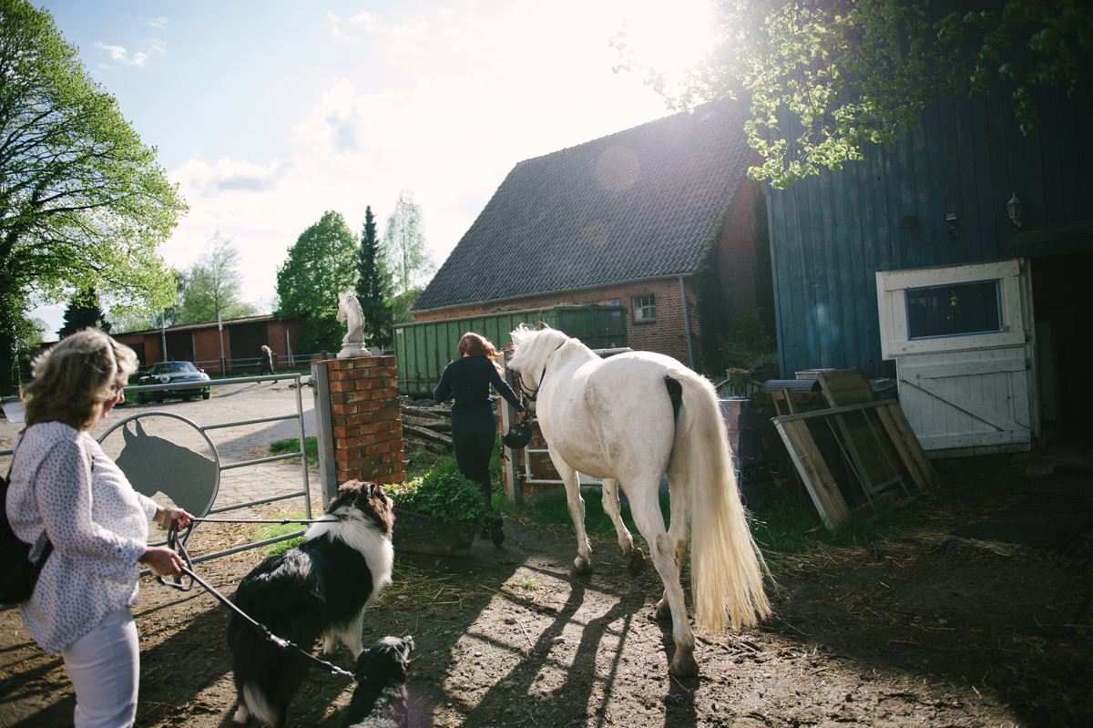 Photographer, Horse, documentary, Pferd, Kathrin Stahl-15