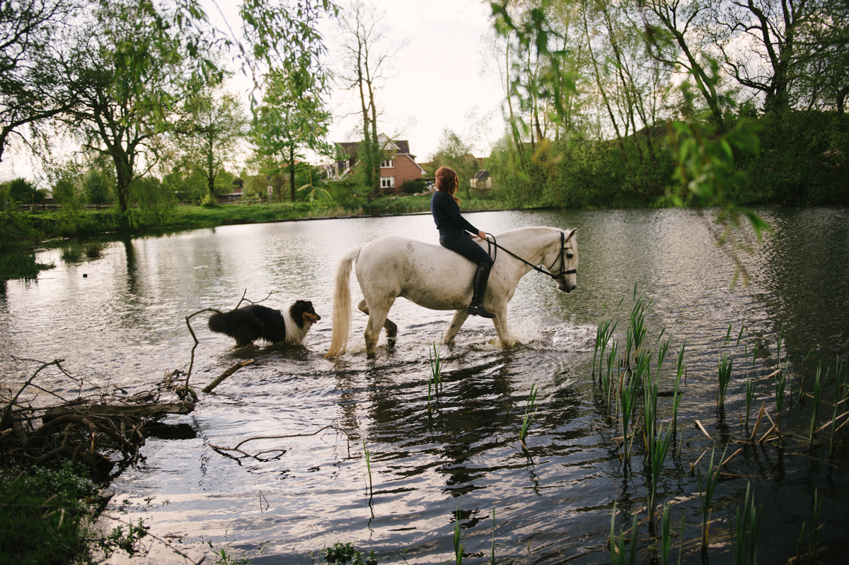 Photographer, Horse, documentary, Pferd, Kathrin Stahl-26