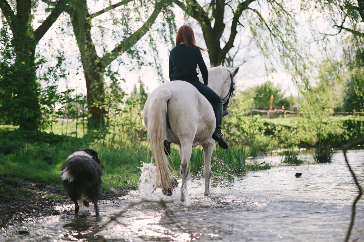 Photographer, Horse, documentary, Pferd, Kathrin Stahl-34