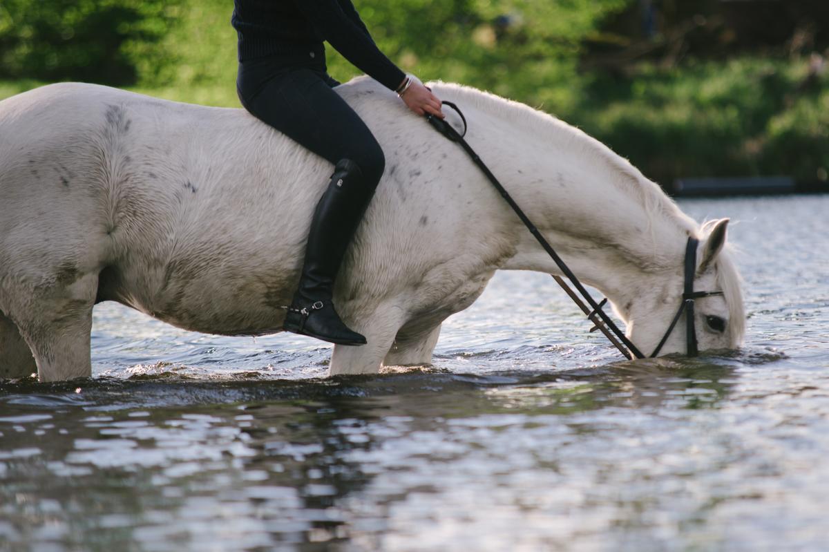 Photographer, Horse, documentary, Pferd, Kathrin Stahl-36