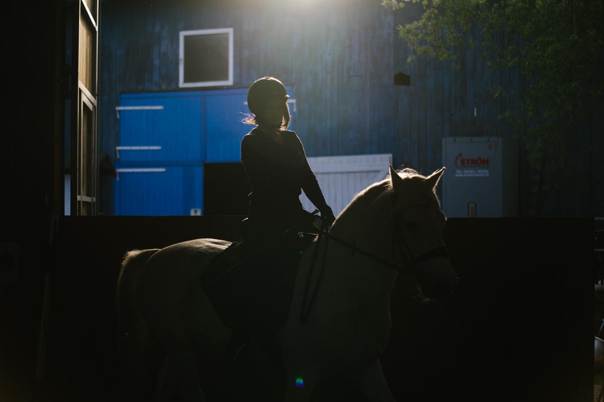 Photographer, Horse, documentary, Pferd, Kathrin Stahl, english, spanish