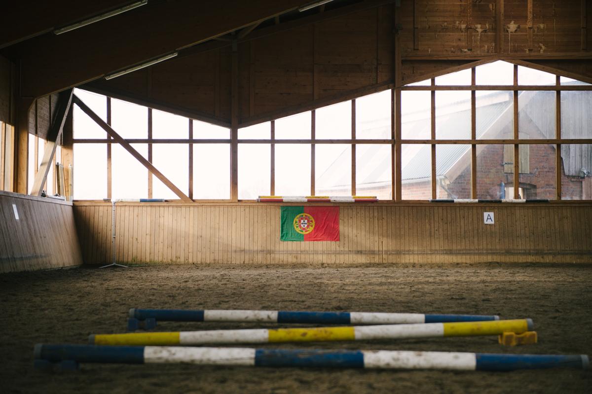 Pferd, Fotograf, Dokumentarisch, Hamburg, Kathrin Stahl_061