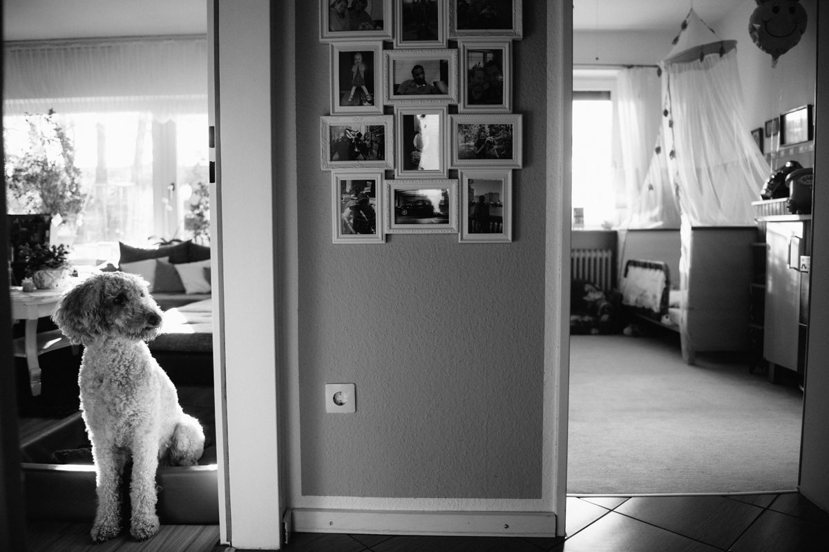 Familienfotograf, Dokumentarisch, Hamburg, Kathrin Stahl_-12