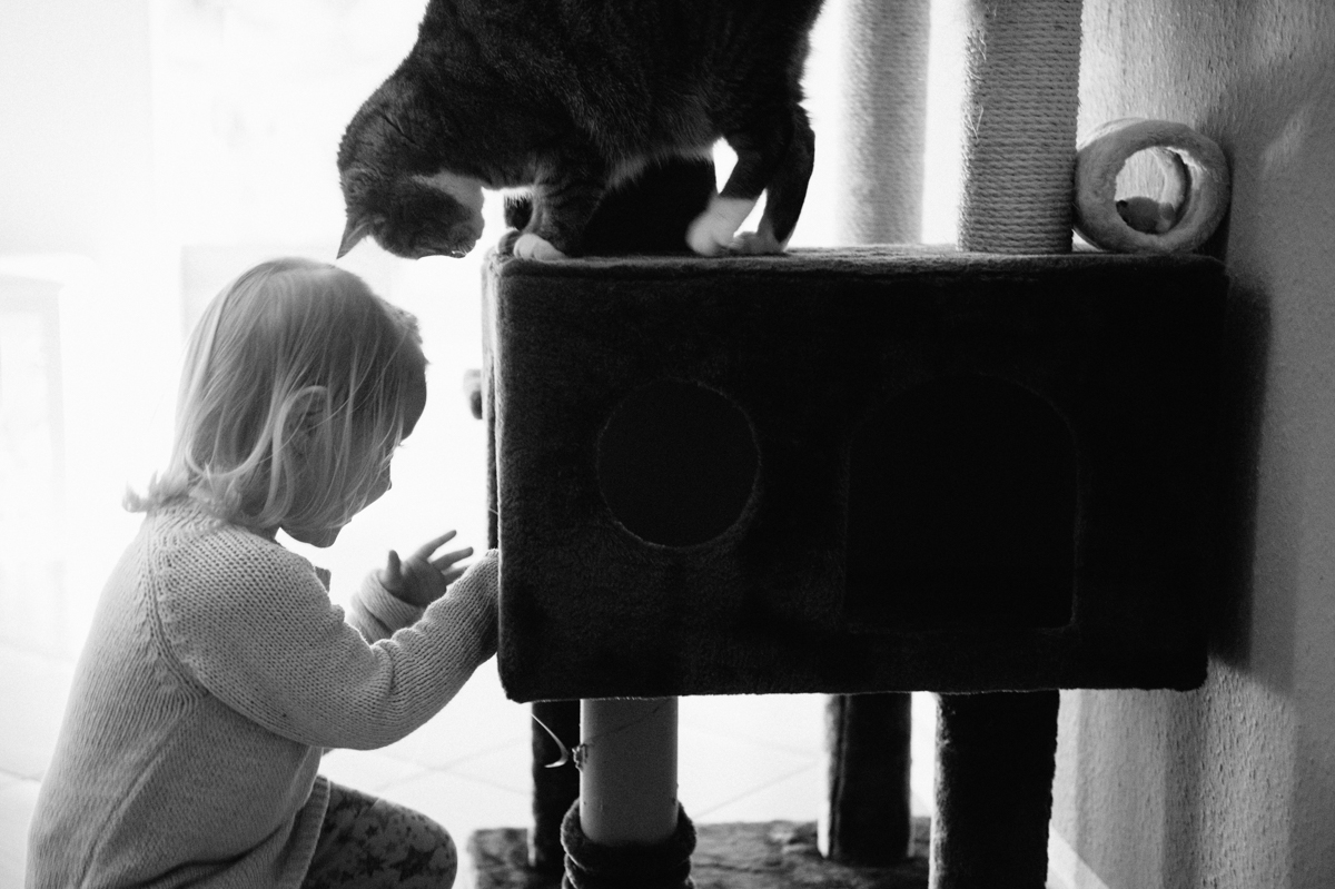 Katze, Kind, Hamburg, Kathrin Stahl Photographer