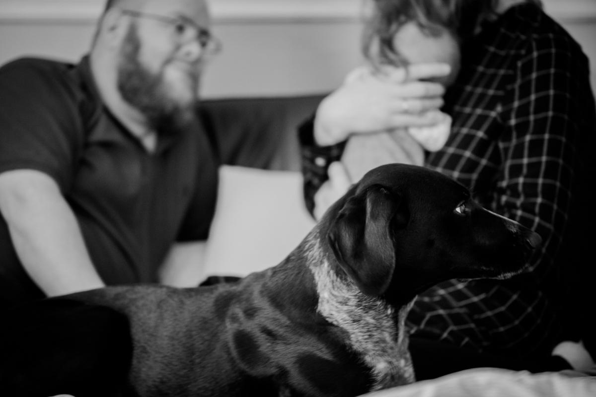 Familie, Hund, Fotograf, ungestellt, Hamburg, KathrinStahl